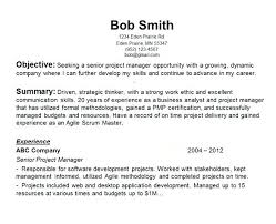 Resume Objective General Professional Resume Templates