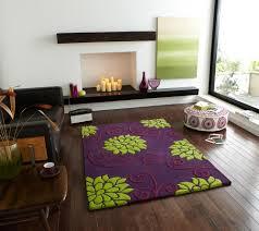 Purple Living Room Rugs Astonishing Design Purple Living Room Rugs Pretty Rug Shaggy