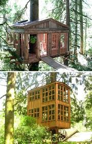 tree house decorating ideas. Tree House Ideas The For Decorating