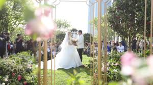 Remove The Veil! Here Are Some Great Wedding Tips!