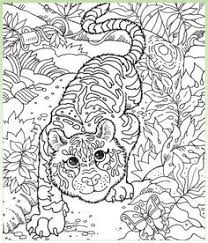 Small Picture Koalas Kangaroos Hidden Picture coloring page Lets Color For