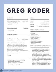Best Resume Sample For It Professionals Refrence Best Cv Examples