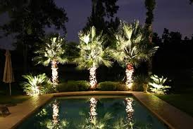 low voltage landscape lights pool