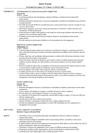 Safety Manager Resume Safety Director Resume Samples Velvet Jobs