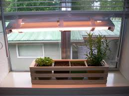 Hydroponic Kitchen Herb Garden Simple Indoor Herb Garden With Adjustable Grow Light 5 Steps