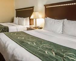 comfort suites west dallas cockrell hill 76 1 0 3 updated 2018 s hotel reviews tx tripadvisor
