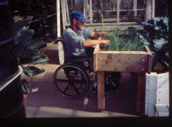 Small Picture Article all about gardening from a wheelchair and horticultural
