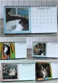 cat desk calendar cvs photo gifts
