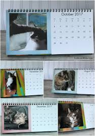 cat desk calendar cvs photo gifts