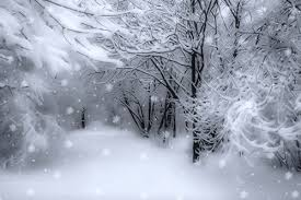 Snow Animated Home