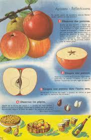 Les 90 Meilleures Images Du Tableau Enfants Apprendre Sur Vie Quotidienne Coloriages Nourriture Fruits Pomme STemplate Imprimer Accrocheporte L