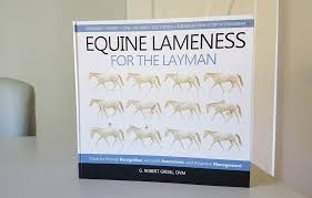 Ep 20 Equine Lameness For The Layman Stall And Stable