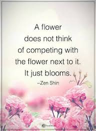 Quotes About Flowers Blooming Extraordinary Compare Quotes A Flower Does Not Think Of Competing With The Flower