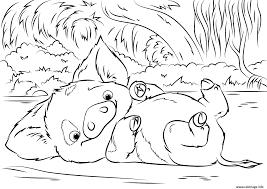 Coloriage Pua Pet Pig De Vaiana Moana Disney Dessin