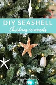 diy seashell ornaments sand dollar sea star starfish spindle shell