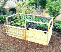 cool how to keep rabbits out of garden how to keep rabbits out of vegetable garden