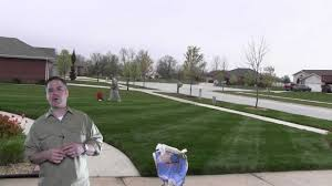 How Much Fertilizer Do I Put On The Lawn