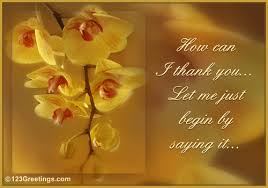 Free E Cards Thank You How Can I Thank You Free Flowers Ecards Greeting Cards