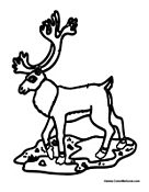 Small Picture Caribou Coloring Pages