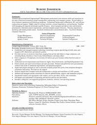 Beautiful It Pre Sales Resume Sample Frieze Examples Professional
