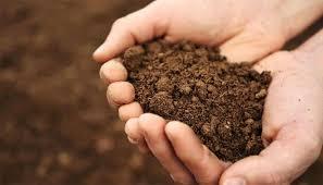 how to prepare garden soil for planting