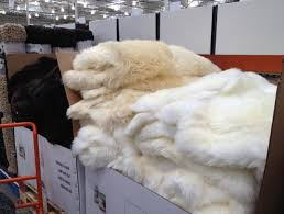 white sheepskin rug costco