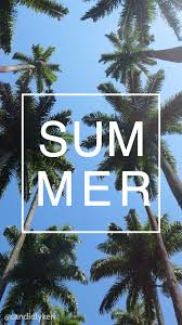 summer palm tree ocean background you can