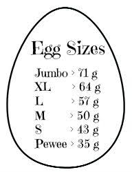 Chicken Sizes Chart Individual Egg Size Chart In Grams Chicken Life Egg Chart