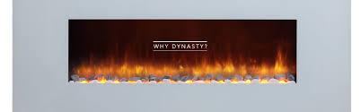 why dynasty