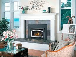 fireplace distributors