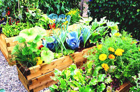 Small Kitchen Garden Kitchen Garden Wikipedia The Free Encyclopedia Goodhomezcom