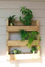 this hanging vertical garden is made from a pallet that was found for free by a