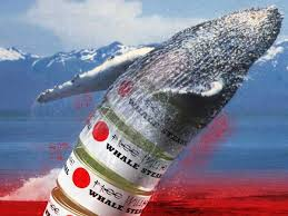 Image result for pictures of whaling in japan