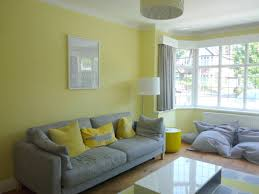 For Feature Walls Living Rooms Feature Wall Colour Ideas Living Room Living Room Wall Color