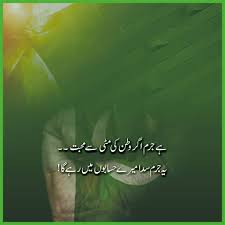 Pin By Ayesha Abdul Hameed On My Proud Pakistan Independence