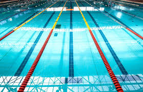 olympic swimming pool lanes. Plain Olympic Olympic Size Pool Swimming Lanes Stock Photo New  York City   For Olympic Swimming Pool Lanes I