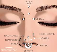 All Face Piercings Chart Encyclopedia Of Body Piercings Standard Nostril Nose