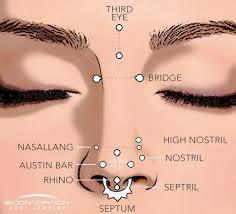 Facial Piercing Chart Encyclopedia Of Body Piercings Standard Nostril Nose