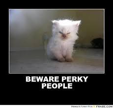 BEWARE PERKY PEOPLE... - Evil Kitteh Meme Generator Posterizer via Relatably.com