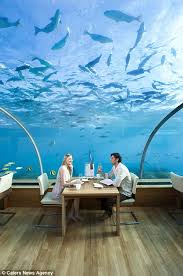 underwater restaurant disney world. PIC FROM CATERS NEWS - (PICTURED: The Restaurant) DEEP Sea Diners Enjoy Underwater Restaurant Disney World A