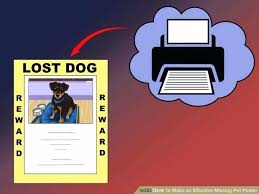 how to make lost dog flyers lost pet flyer template cat lytte co