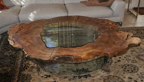 Image of: Tree Trunk Coffee Table Large