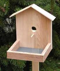 woodworking projects for kids bird house. free plans woodworking resource from runnerduck - birds,birdfeeders, birdhouse,free plans,projects projects for kids bird house b