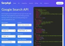 Image result for api for google serp