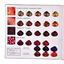 Color Chart For Hair Color Ice Cream Hair Color Chart Book Buy Ice Cream Hair Color Chart Hair Color Chart Book Color Chart Hair Product On Alibaba Com