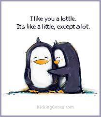 cute penguin drawing. Modren Cute Cute Penguin Love Drawing  Photo6 With Penguin Drawing