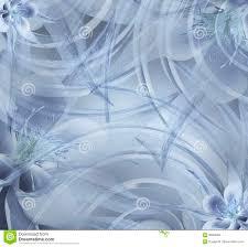 Bloemen Lichte Wit Blauwe Mooie Achtergrond Behang Van Wit Blauw De