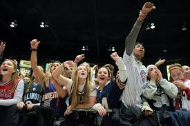 basketball fans cheering. naperville north fans cheer on their team during the class 4a supersectional boys basketball game against cheering