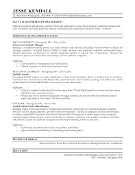 Portfolio Resume Examples Auto Loan Officer Sample Manager Exle