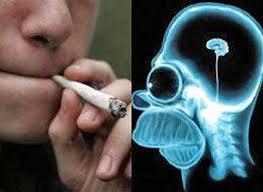 Kết quả hình ảnh cho marijuanas effects